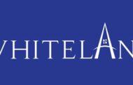 Grand Launch of Whiteland Corporation, real estate venture in Gurugram